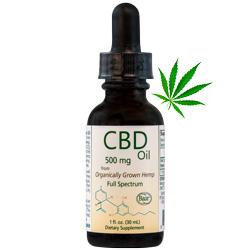 where can i buy cbd massage oil